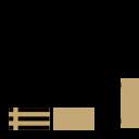 Assessment & Diagnosis icon